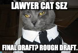 cat draft